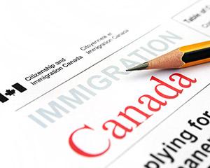 Avocat immigration Montréal Cabinet Gelber Liverman photo